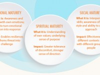 The Fully Formed Leader: Spiritual, Emotional & Social Maturity