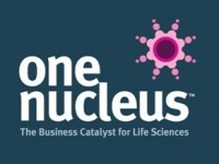 Disruptive Talent Seminar with One Nucleus